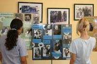 Colégio Americano mostra em fotos a importância da mulher na sociedade