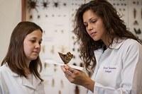 Ciências biológicas recebe conceito máximo pelo MEC