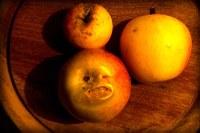 Consumir alimentos com partes danificadas pode causar riscos à saúde