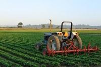 Estudantes de jornalismo são finalistas de prêmio de agronegócios