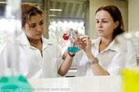 Unimep recebe inscrição para 38 cursos de especialização