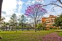 Universitários sul-coreanos visitam o campus Taquaral