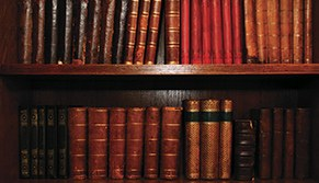 Português – Língua e Literatura